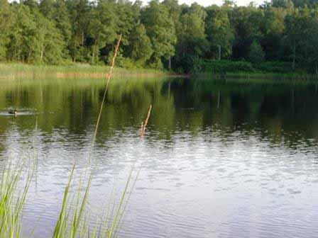 Het meer Asljungasjon