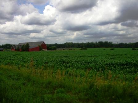 Rood Zweeds huis boerderij
