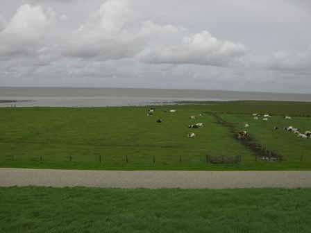 Uitzicht Zwarte Haan bij Oude Biltdijk
