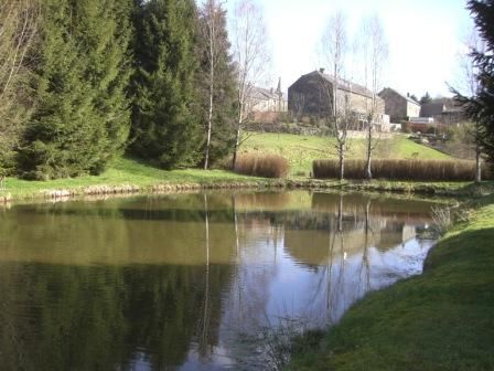 Visvijver bij vakantiehuisje Ardennen