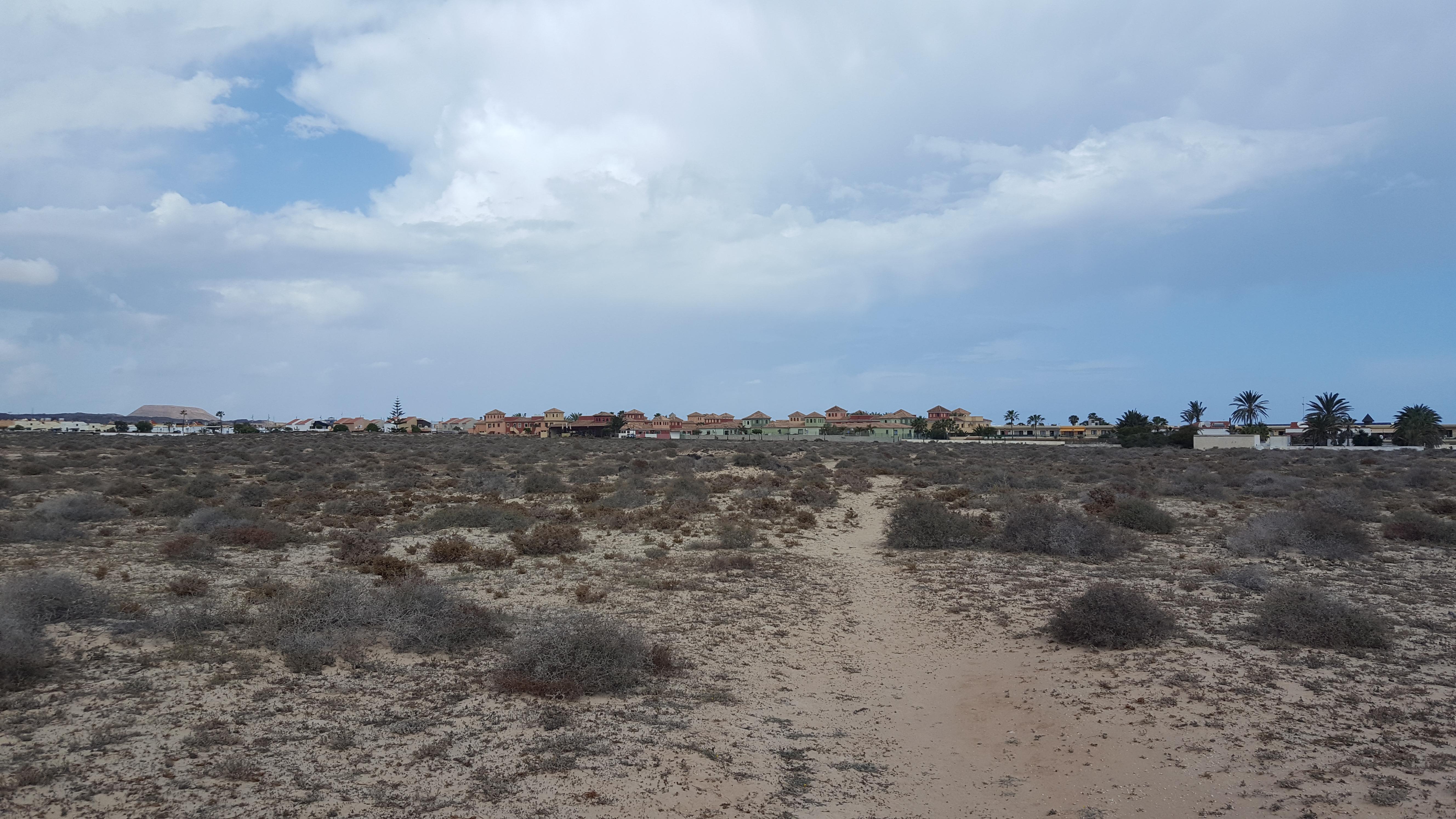 Fuerteventura duinen