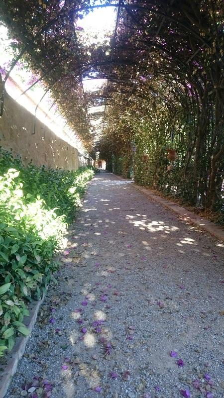 Jardines de Monforte, de tunnel