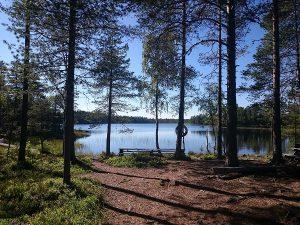Zweeds meer en bos nabij Orsa Grönklitt